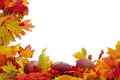 Fondo delle mele e di Autumn Leaves Fotografie Stock