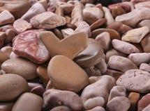 Fondo delle pietre del mare in un piano uniforme Immagine Stock