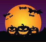 Fondo delle zucche di Halloween Fotografie Stock Libere da Diritti