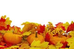 Fondo delle zucche e di Autumn Leaves Fotografie Stock Libere da Diritti