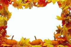 Fondo delle zucche e di Autumn Leaves Fotografia Stock