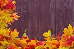 Fondo delle zucche e di Autumn Leaves Immagine Stock Libera da Diritti