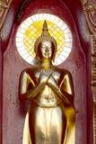 Fondo dello specchio della statua di Buddha dell'oro Fotografia Stock Libera da Diritti