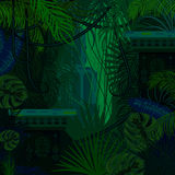 Fondo denso de la naturaleza de la selva del follaje stock de ilustración
