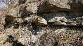 Fondo dentado de la roca imagenes de archivo