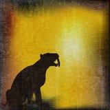 Fondo dentado del tigre de SABRE Imagen de archivo libre de regalías
