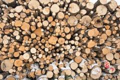 Fondo derribado del extracto de la industria de la madera de los árboles Foto de archivo libre de regalías