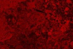 Fondo detallado colorido del Grunge alto Fotos de archivo
