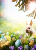 Fondo di Art Easter; La primavera fiorisce il coniglietto di pasqua e pasqua e fotografie stock