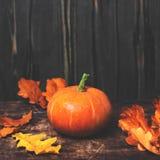 Fondo di Autumn Fall con le zucche e le foglie dorate su ruggine Immagine Stock Libera da Diritti