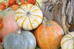 Fondo di autunno fotografie stock libere da diritti