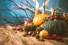 Fondo di autunno con frutta Fotografia Stock