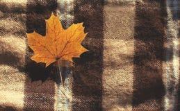 Fondo di autunno con la foglia di acero gialla sul plaid Fotografia Stock Libera da Diritti
