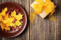 Fondo di autunno con le foglie di acero su un contenitore di regalo e di piatto fotografia stock