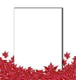 Fondo di autunno con le foglie bianche di rosso e della carta Fotografia Stock