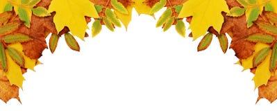Fondo di autunno con le foglie secche in un angolo Fotografie Stock Libere da Diritti