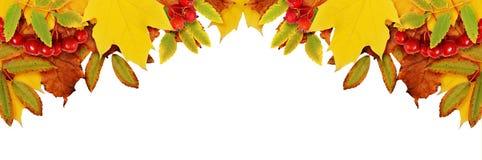 Fondo di autunno con le foglie secche in un angolo Fotografia Stock Libera da Diritti