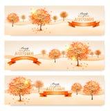 Fondo di autunno con le foglie variopinte e gli alberi Fotografia Stock