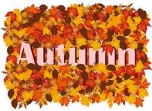 Fondo di autunno con le foglie variopinte e l'autunno di parola Immagini Stock Libere da Diritti
