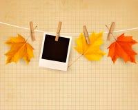 Fondo di autunno con le foglie variopinte sulla corda Fotografia Stock Libera da Diritti