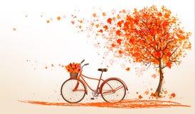 Fondo di autunno con un albero e una bicicletta Immagini Stock
