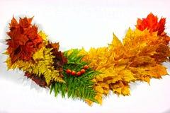 Fondo di autunno, elementi delle foglie di acero Fotografia Stock Libera da Diritti