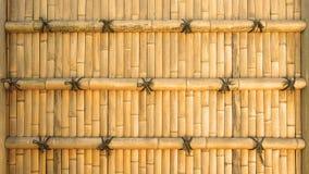 Fondo di bambù Immagini Stock