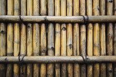 Fondo di bambù della parete Fotografia Stock