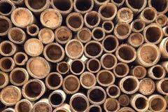 Fondo di bambù della sezione Immagini Stock