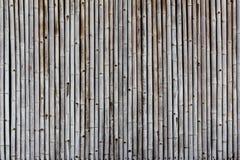 Fondo di bambù di struttura della parete Fotografie Stock