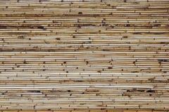 Fondo di bambù verniciato Fotografia Stock Libera da Diritti