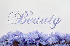 Fondo di bellezza con i fiori ed il testo illustrazione di stock