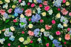Fondo di bello fiore per la decorazione di nozze Immagini Stock