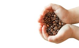 Fondo di bianco del caffè dei chicchi di caffè Fotografia Stock