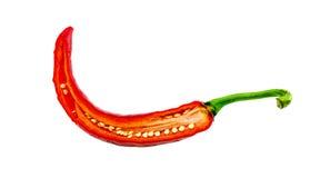 Fondo di bianco del peperoncino rosso Fotografie Stock