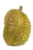 Fondo di bianco della frutta del Durian Fotografie Stock Libere da Diritti