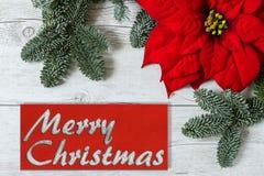 Fondo di Buon Natale fotografia stock