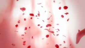 Fondo di caduta dei petali rosa royalty illustrazione gratis