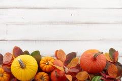 Fondo di caduta delle zucche e delle foglie di autunno variopinte fotografia stock