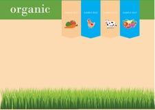 Fondo di carta organico Fotografia Stock