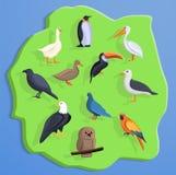Fondo di concetto della terra dell'uccello, stile del fumetto illustrazione di stock