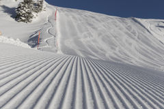 Fondo di corsa con gli sci - neve fresca sul pendio dello sci Immagine Stock Libera da Diritti