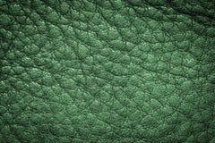 Fondo di cuoio verde di struttura per progettazione Fotografia Stock Libera da Diritti