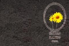 Fondo di Eco con la siluetta della lampadina e del suolo Immagine Stock Libera da Diritti