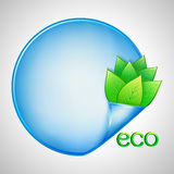 Fondo di Eco con le foglie verdi e la carta Fotografia Stock Libera da Diritti