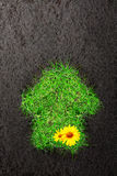 Fondo di Eco con suolo e la casa di erba Immagine Stock Libera da Diritti