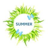 Fondo di estate Immagini Stock Libere da Diritti