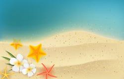 Fondo di estate con i fiori e le stelle marine del frangipane illustrazione di stock