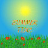 Fondo di estate con il sole e l'erba Fotografia Stock