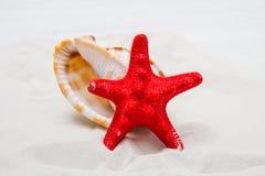Fondo di estate con la sabbia, le stelle marine e le coperture bianche Fotografie Stock Libere da Diritti